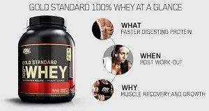 Optimum Nutrition 100% Whey Gold Standard Review